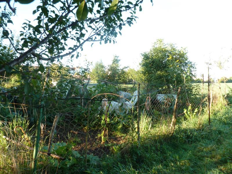 kleiner Hobbygarten