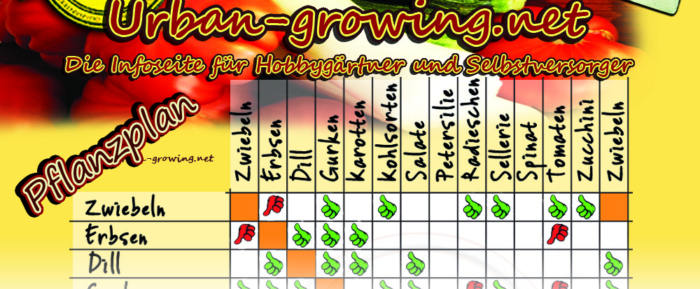 Der Ultimative Pflanzkalender | Aussaat & Erntezeitpunkt ... Selbstversorger Garten Anlegen Obst Gemuse