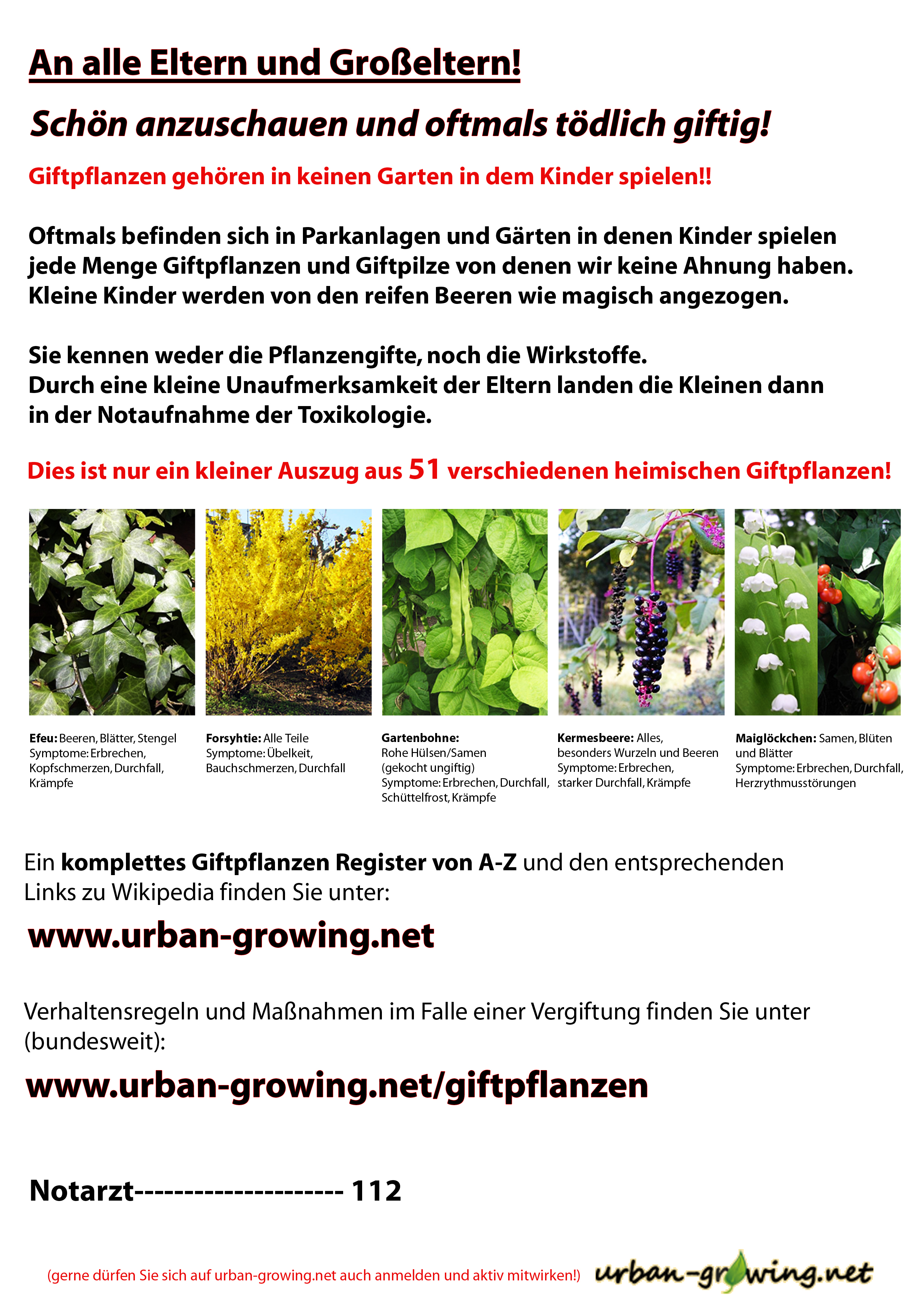 Giftpflanzen Aushang für Kindergärten und Schulen