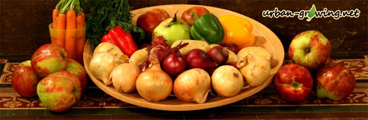 Obst und Gemüse die vor Krebs schützen - www.urban-growing.net
