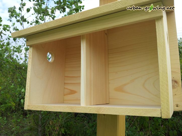Nistkasten Doppelhaus geöffnet - www.urban-growing.net