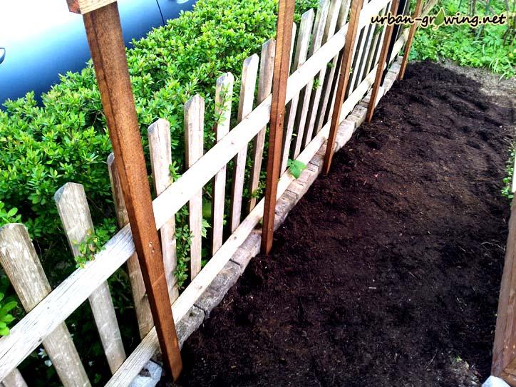 Bohnenspalier - Rankhilfe selbst gebaut - www.urban-growing.net