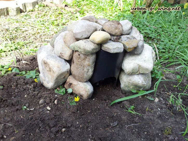 Schneckenfalle selbst gebaut - www.urban-growing.net