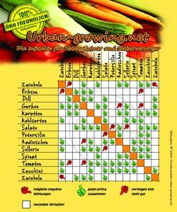 Pflanzplan, welches Gemüse passt zu einander?