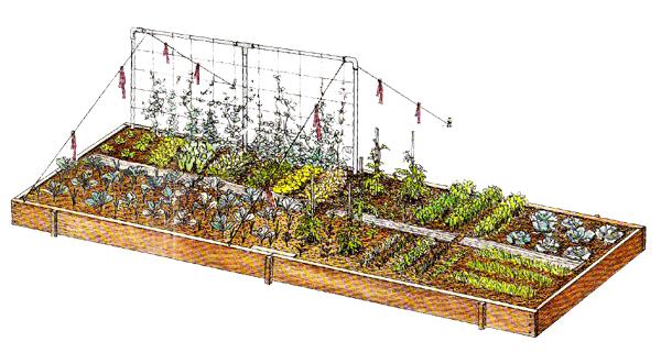 Grosses Hochbeet Gartentipps Survival Tipps