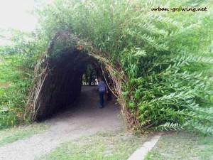Weidentunnel und Weidentipi - www.urban-growing.net - copyright Volker Truckenmüller