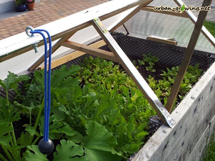 Fabelhaft Hochbeetdach | Dach für Hochbeet | Hochbeetwetterschutz #QJ_04