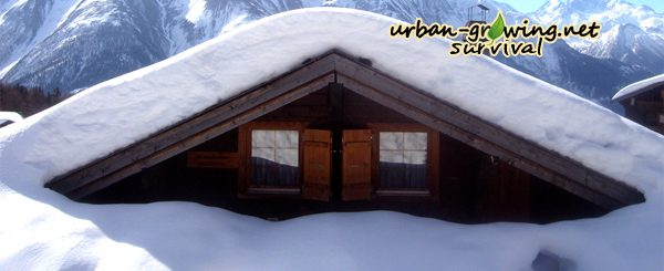 www.urban-growing.net - Snow Chaos - survival check list - by Mirko Grifoni-sxc