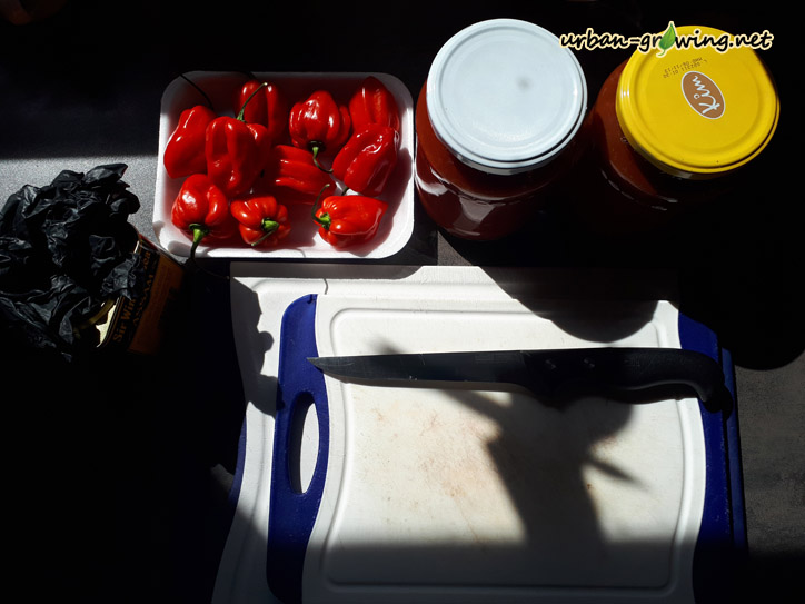 Chili Sauce selber machen, www.urban-growing.net - copyright Volker Truckenmüller